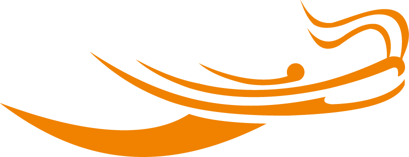www.speeddragon.com